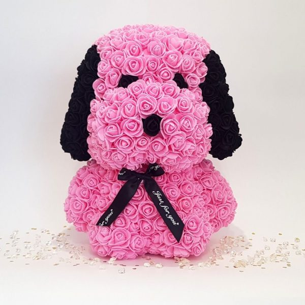 Pink rose dog with ears front