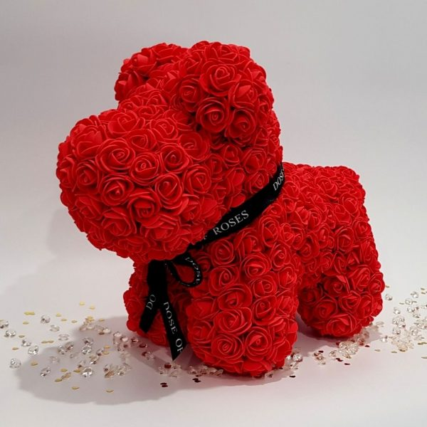 Red rose dog side pose