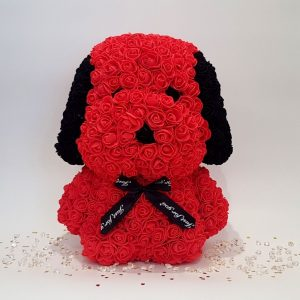 Red rose dog with ears front