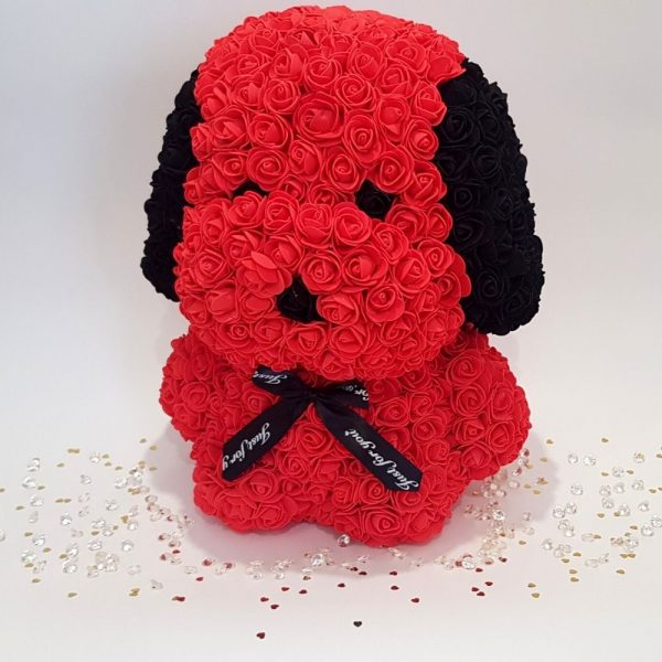 Red rose dog with ears